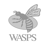 london-wasps-rfu